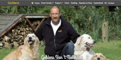 website Golden Retriever